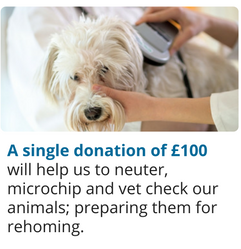 A single donation of £100