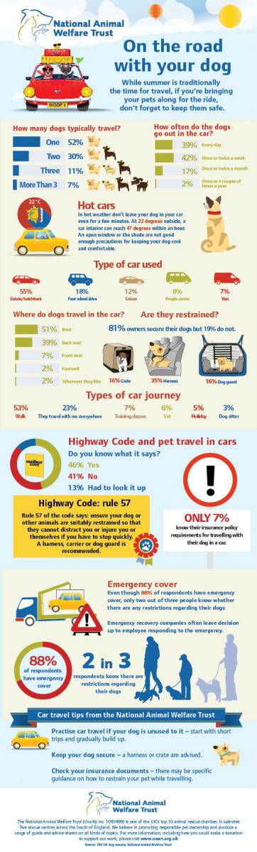 NAWT On the road with your dog infographic