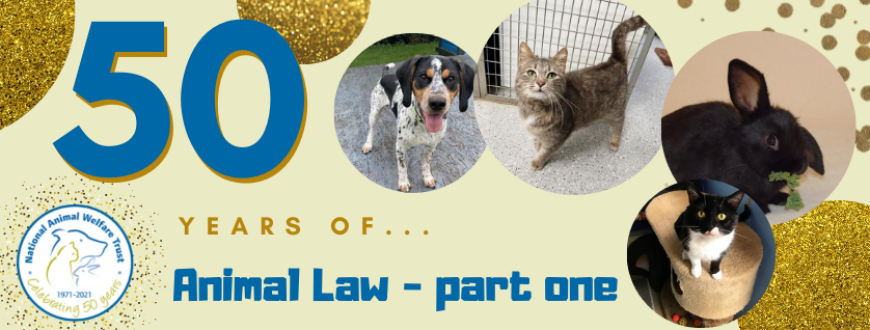50 years of animal law part one