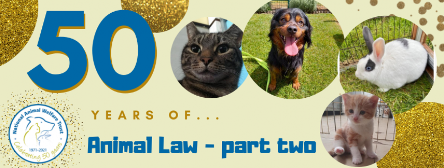50 years of animal law part two