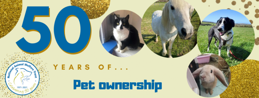 50 years of pet ownership