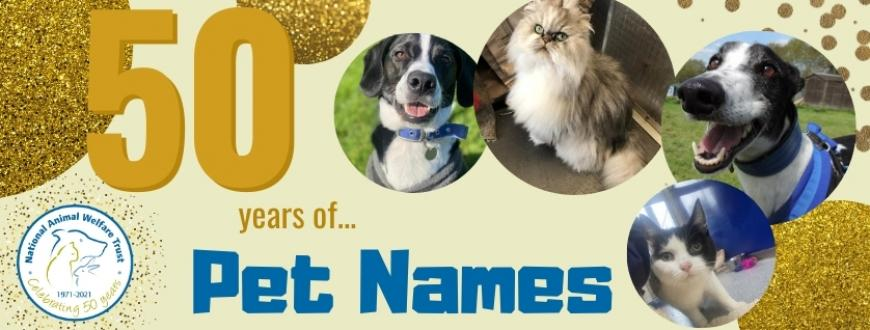 50 years of pet names