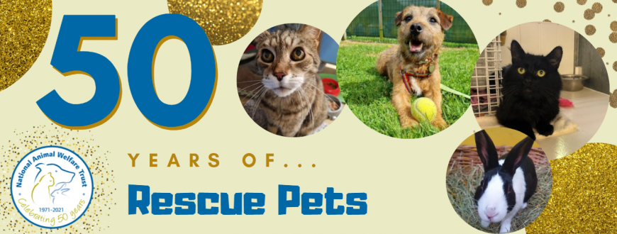 50 years rescue pets