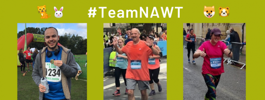 Fundraising #TeamNAWT