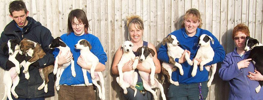 Staff and puppies at one of the NAWT rehoming centres