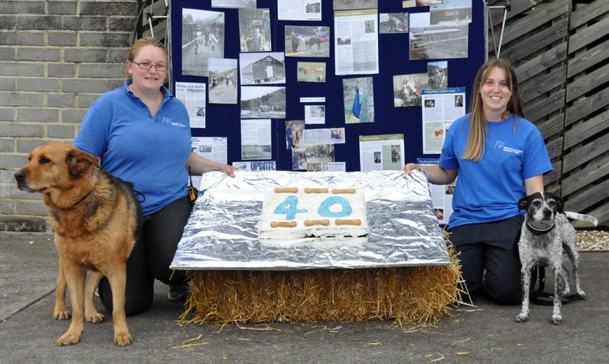 Celebration with dogs and cake at Heaven's Gate Somerset animal rehoming centre