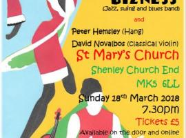 Charity Concert Poster
