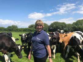 Staying safe around cattle