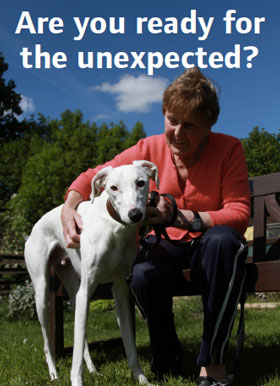 Image taken from the poster for the NAWT Tails of the Unexpected campaign, features a dog carer with a dog